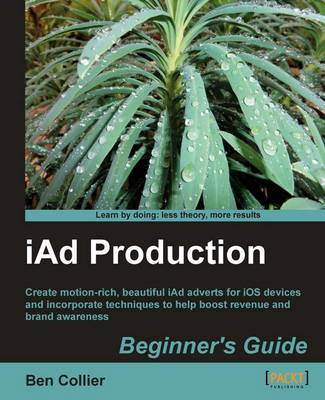 iAd Production Beginner's Guide (Paperback)
