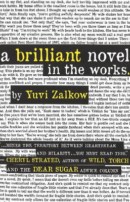 A Brilliant Novel in the Works (Paperback)