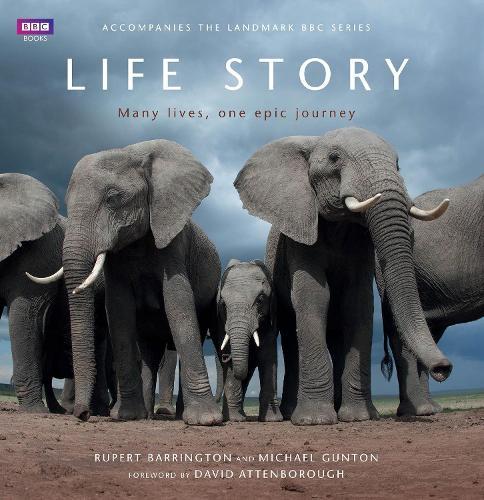 Life Story (Hardback)