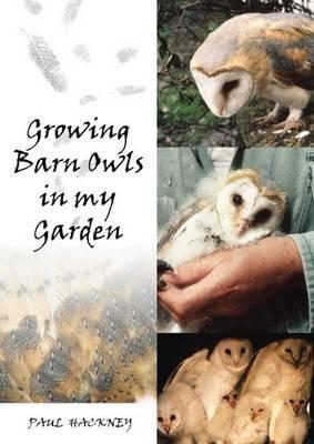 Growing Barn Owls in my Garden (Paperback)