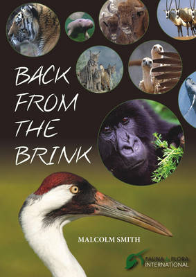 Back from the Brink (Paperback)