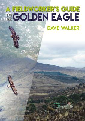 A Fieldworker's Guide to the Golden Eagle (Paperback)