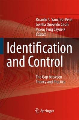 Identification and Control: The Gap between Theory and Practice (Paperback)