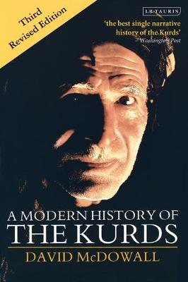 A Modern History of the Kurds (Paperback)