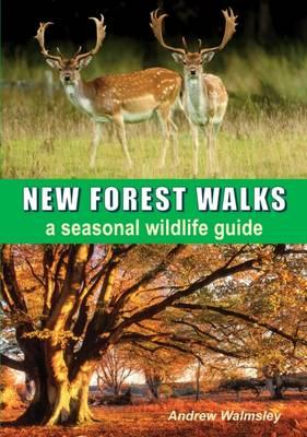 New Forest Walks: A Seasonal Wildlife Guide (Paperback)
