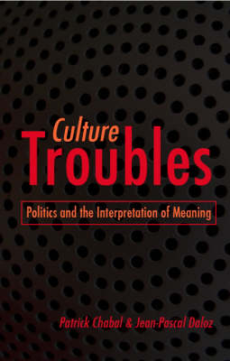 Culture Troubles: Politics and the Interpretation of Meaning - Culture and Politics Series (Hardback)