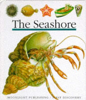The Seashore - First Discovery Series No. 15 (Hardback)