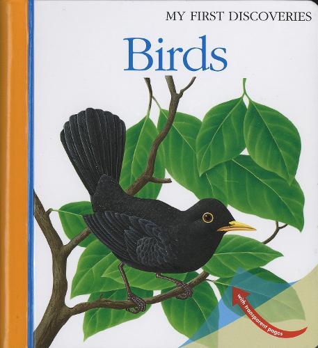Birds - My First Discoveries (Spiral bound)