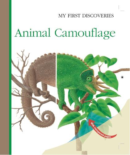 Animal Camouflage - My First Discoveries (Hardback)