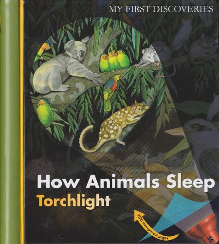 How Animals Sleep - My First Discoveries/Torchlight (Hardback)