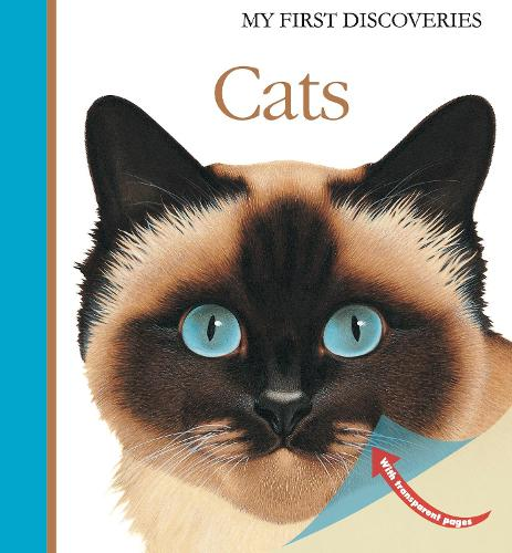 Cats - My First Discoveries (Hardback)