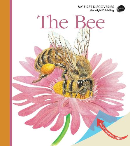 The Bee - My First Discoveries (Spiral bound)