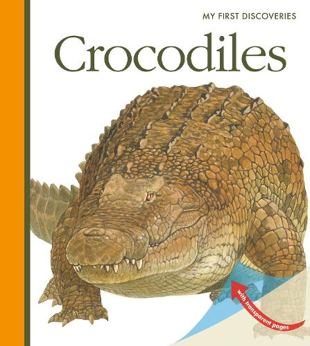 Crocodiles - My First Discoveries (Spiral bound)