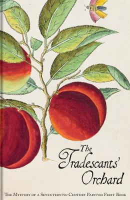 The Tradescants' Orchard: The Mystery of a Seventeenth-Century Painted Fruit Book (Hardback)