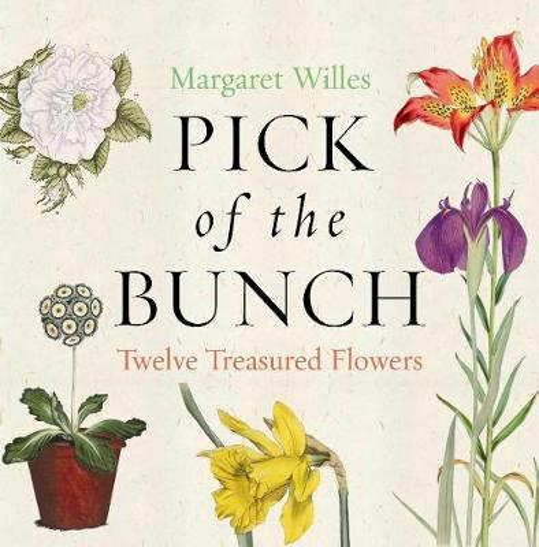 Pick of the Bunch: The Story of Twelve Treasured Flowers (Hardback)