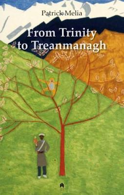 From Trinity to Treanmanagh (Paperback)