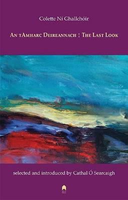 An tAmharc Deireannach : The Last Look (Paperback)