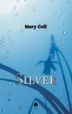 Silver (Paperback)