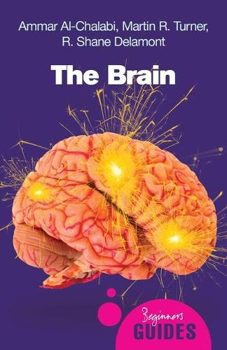 The Brain: A Beginner's Guide - Beginner's Guides (Paperback)