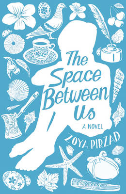 The Space Between Us (Hardback)