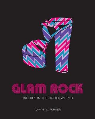 Glam Rock: Dandies in the Underworld (Hardback)