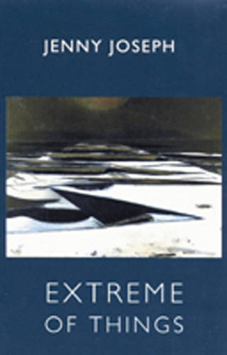 Extreme of Things (Paperback)