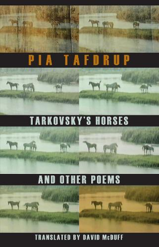Tarkovsky's Horses and Other Poems (Paperback)