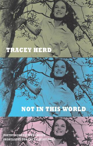 Not in This World (Paperback)