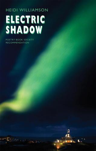 Electric Shadow (Paperback)