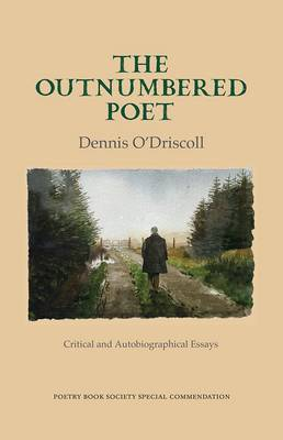 The Outnumbered Poet: Critical and Autobiographical Essays (Hardback)