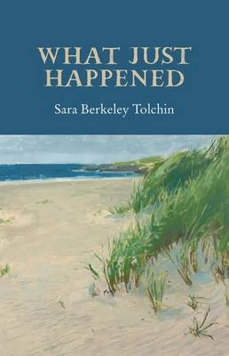 What Just Happened (Paperback)