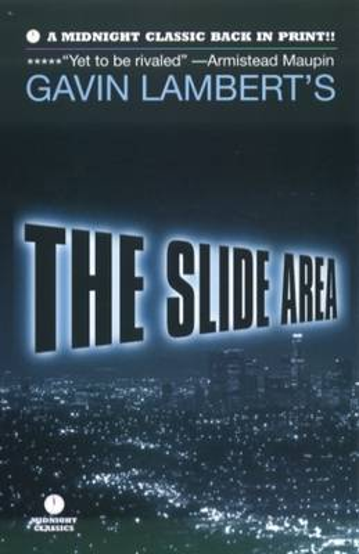 The Slide Area (Paperback)