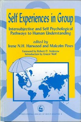 Self Experiences in Group: Intersubjective and Self Psychological Pathways to Human Understanding - International Library of Group Analysis (Paperback)