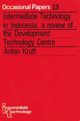Intermediate Technology in Indonesia (Paperback)