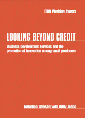 Looking Beyond Credit: Business development services and the promotion of innovation among small producers (Paperback)