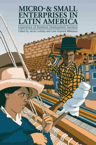 Micro- and Small Enterprises in Latin America: Experience of business development services (Paperback)