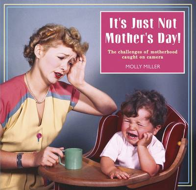 It's Just Not Mother's Day: The Challenges of Motherhood in Photos (Hardback)