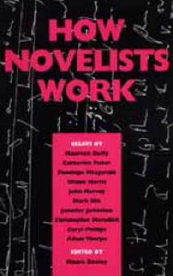 How Novelists Work (Paperback)