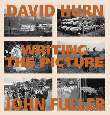 Writing the Picture (Hardback)