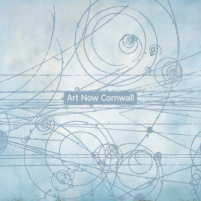 Art Now Cornwall: Contemporary Artists (Paperback)