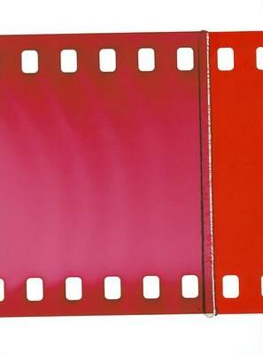 Tacita Dean - the Unilever Series (Paperback)