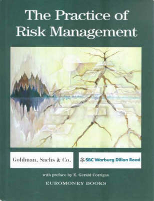 The Practice of Risk Management (Hardback)