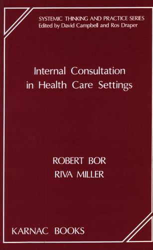 Internal Consultation in Health Care Settings (Paperback)