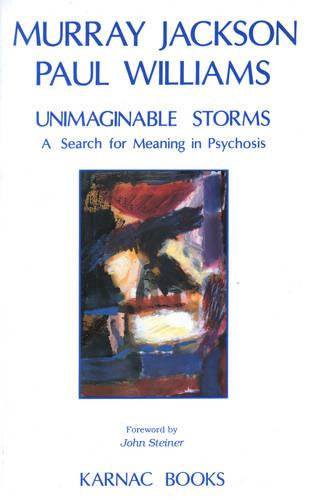 Unimaginable Storms: A Search for Meaning in Psychosis (Paperback)