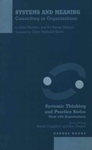 Systems and Meaning: Consulting in Organizations (Paperback)