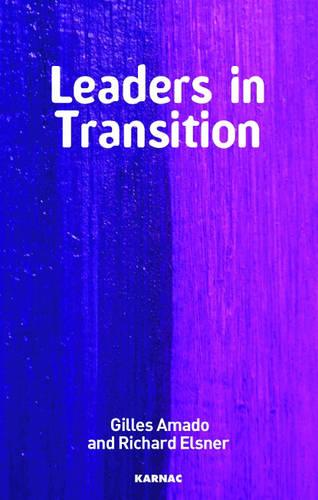 Leaders in Transition: The Tensions at Work as New Leaders Take Charge (Paperback)