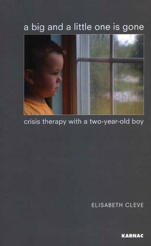 A Big and a Little One is Gone: Crisis Therapy with a Two-year-old Boy (Paperback)