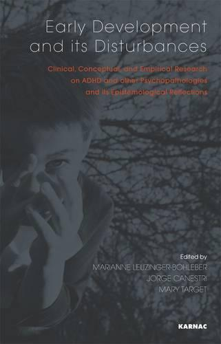 Early Development and its Disturbances: Clinical, Conceptual and Empirical Research on ADHD and other Psychopathologies and its Epistemological Reflections (Paperback)