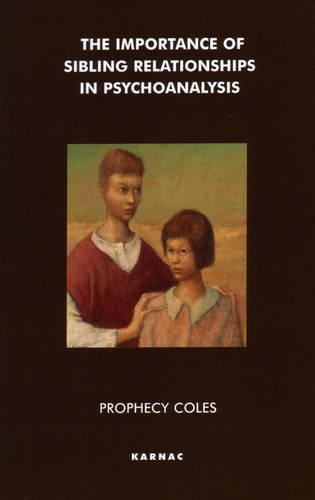 The Importance of Sibling Relationships in Psychoanalysis (Paperback)