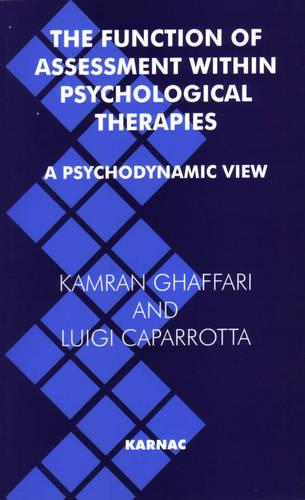 The Function of Assessment Within Psychological Therapies: A Psychodynamic View (Paperback)
